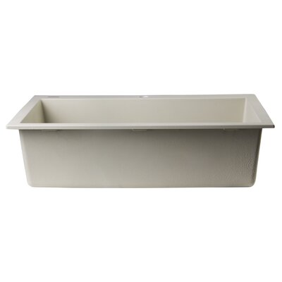 30 x 20 Drop-In Single Bowl Kitchen Sink Finish: Biscuit