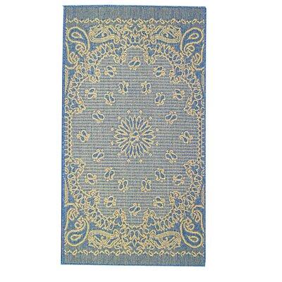 Bandana Blue Indoor/Outdoor Area Rug Rug Size: 28 x 47