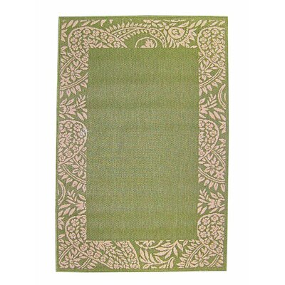 Paisley Green Indoor/Outdoor Area Rug Rug Size: 53 x 77