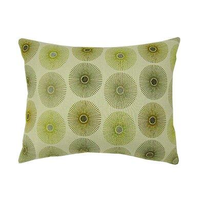 get stargaze lumbar pillow at discounted price