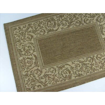 Entwined Chocolate Indoor/Outdoor Area Rug Rug Size: 28 x 44