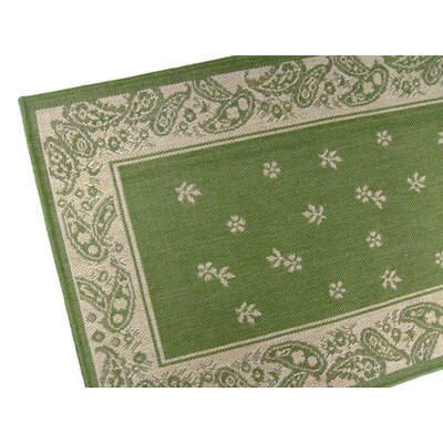 Paisley Floral Emerald Green Indoor/Outdoor Area Rug Rug Size: Runner 2 x 76