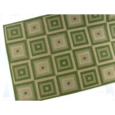 Pyramid Blocks Emerald Indoor/Outdoor Area Rug Rug Size: 2 x 3