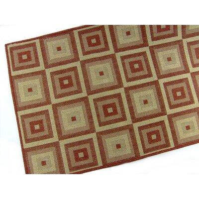 Pyramid Blocks Terracotta Indoor/Outdoor Area Rug Rug Size: 53 x 76