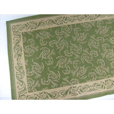Scroll Emerald Green Indoor/Outdoor Area Rug Rug Size: 28 x 44