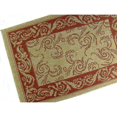 Scroll Terracotta Indoor/Outdoor Rug Rug Size: 2' x 3'