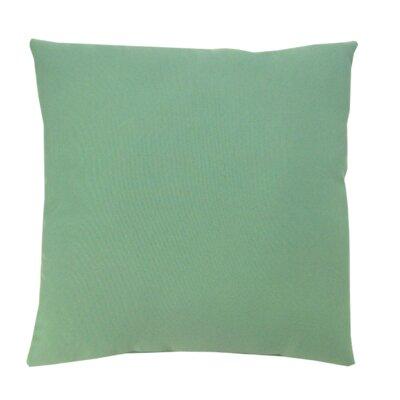 Solid Indoor/Outdoor Throw Pillow Size: 16 x 16