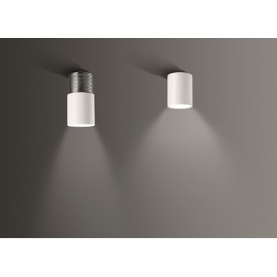 Dot Ceiling Light Finish: White-White, Bulb Type: 75 Watt Incandescent