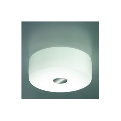 Bisquit PL1 Ceiling Bulb Type: Incandescent