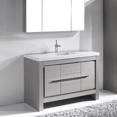 Vicenza 60 Single Bathroom Vanity Set Base Finish: Ash Gray