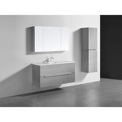 Janeen 48 Single Bathroom Vanity Set Color: Ash Gray
