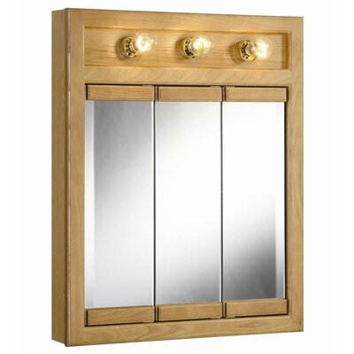 Strickland 24 x 30 Surface Mount Medicine Cabinet with Lighting