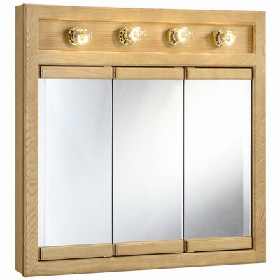 Strickland 30 x 30 Surface Mount Medicine Cabinet with Lighting