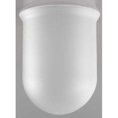 Nautic Ancora 1-Light Mini Pendant Glass Color: Acid, Finish: Earth