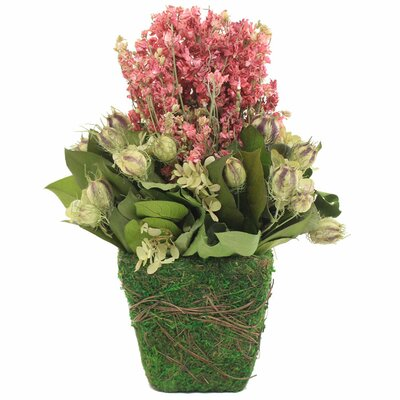 Lux Larkspur Hydrangeas Floral Arrangement in Pot