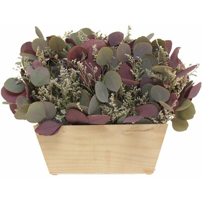 Eucalyptus Floral Arrangement in Garden Box