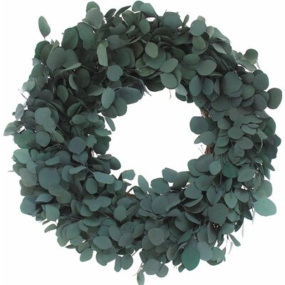 Preserved Dollar Wreath Size: 22