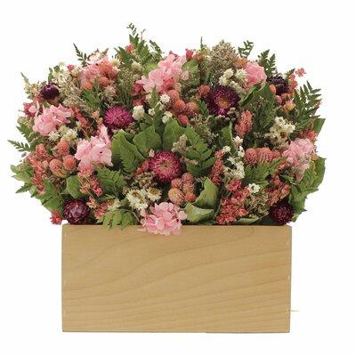 Berry Garden Hydrangea Floral Arrangements in Planter