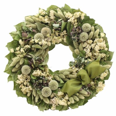 Royal Thistle Wreath Size: 16 H x 16 W
