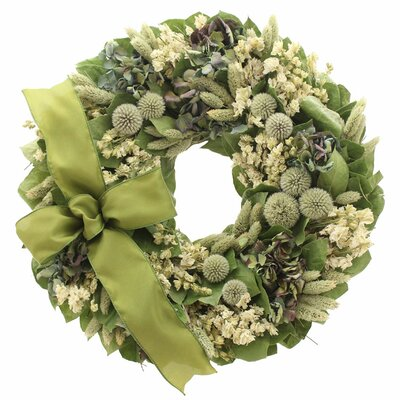 Royal Thistle Wreath Size: 18 H x 18 W