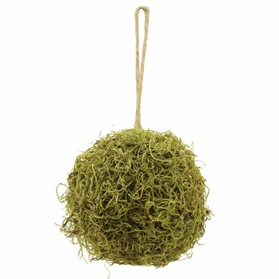 Garden Event Moss Ball Floral Arrangement