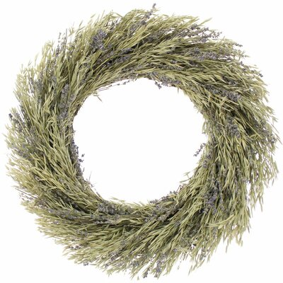 Natural Oats Wreath Size: 22 H x 20 W x 4 D