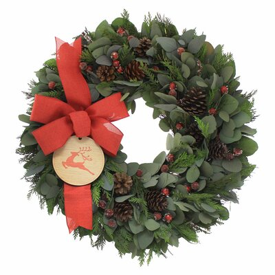 Merry Christmas 22'' Red & Green Wreath