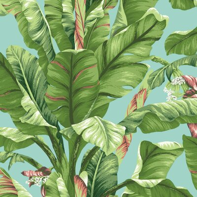 Ashford Tropics 27' x 27 Banana Leaf Wallpaper
