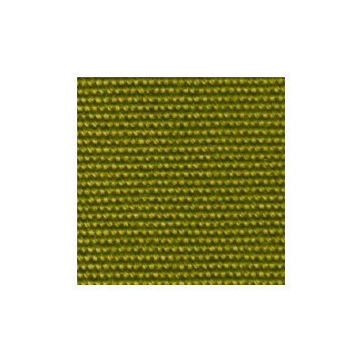 Talt Outdoor Chaise Lounge Cushion Cushion Color: Lime