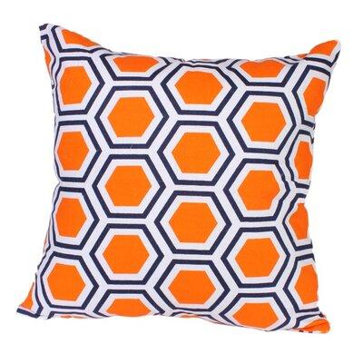 Roma Pillow in Orange Size: 22 x 22