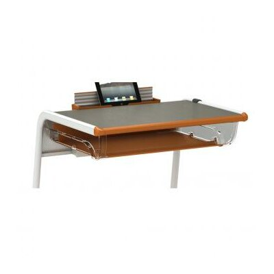 A&D 13 W x 12 D Desk Bookbox Bookbox Finish: Orangesicle