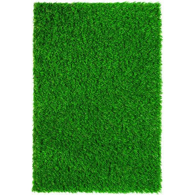 Diamond Light Spring Lawn Grass Turf Doormat Rug size: Rectangle 2 x 3
