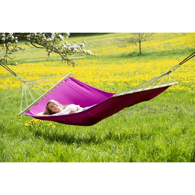Charlotte Tree Hammock Color: Berry