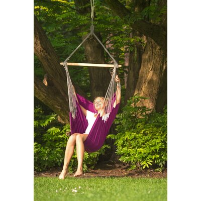 Shayla Chair Hammock Color: Berry