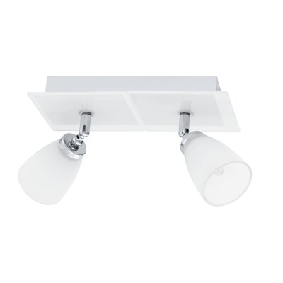 Hank 2-Light Semi Flush Mount