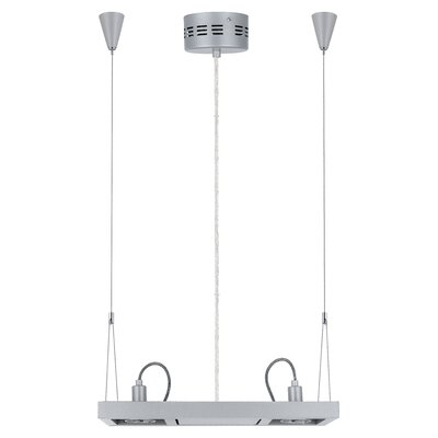 Vectus 2-Light Linear Pendant