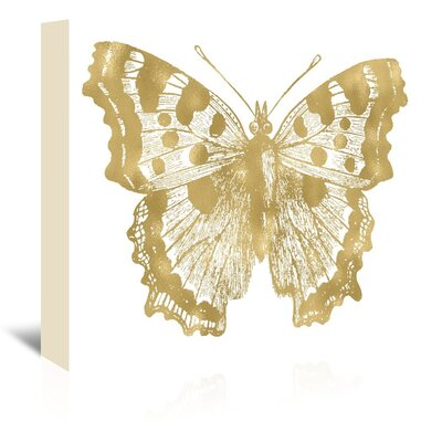 Butterfly-1 by Amy Brinkman Graphic Art on Wrapped Canvas Size: 20