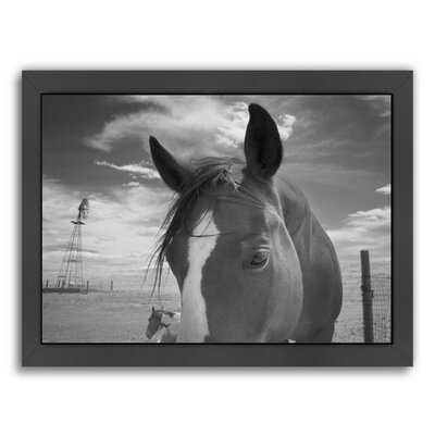 Playful Pals #8 by Murray Bolesta Framed Photographic Print Size: 20.5