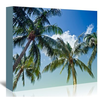 'Palm Trees' by Melanie Viola Photographic Print on Wrapped Canvas Size: 11
