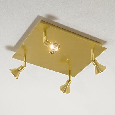 Direct Connect Spot Light Finish: Brushed Brass