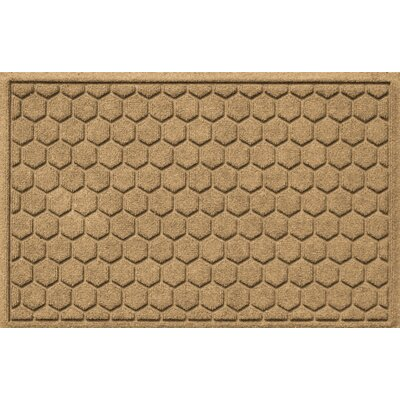 Finnerty Honeycomb Doormat Color: Camel