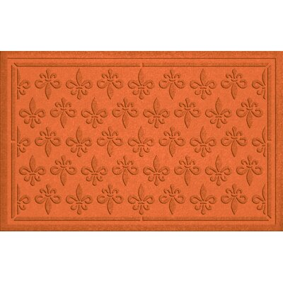 Aqua Shield Fleur Field Doormat Color: Orange