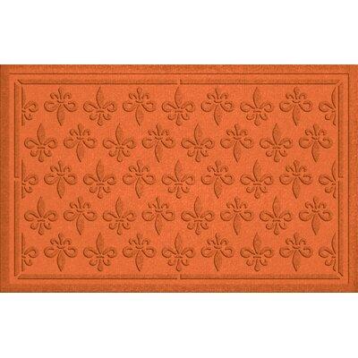 Conway Fleur Field Doormat Color: Orange