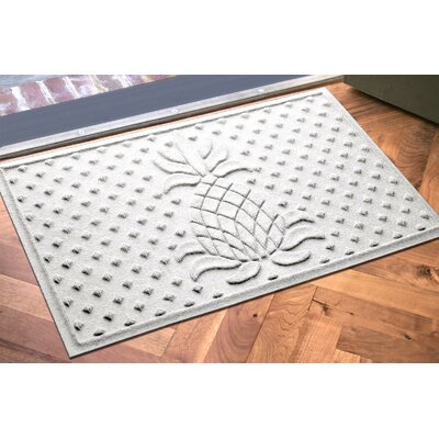 Anitra Diamond Pineapple Doormat Color: White