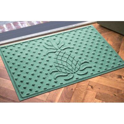 Anitra Diamond Pineapple Doormat Color: Aquamarine