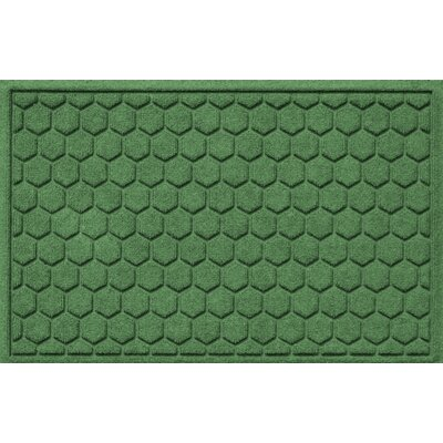 Finnerty Honeycomb Doormat Color: Light Green