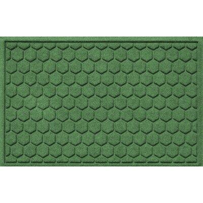 Aqua Shield Honeycomb Doormat Color: Light Green