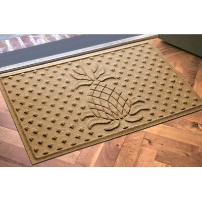 Anitra Diamond Pineapple Doormat Color: Gold
