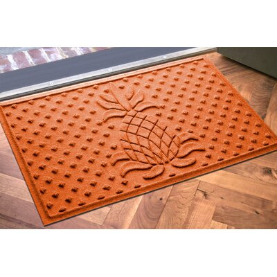 Anitra Diamond Pineapple Doormat Color: Orange