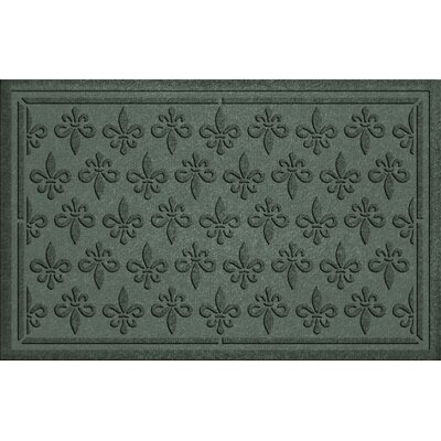 Aqua Shield Fleur Field Doormat Color: Evergreen